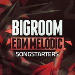 Mainroom Warehouse Bigroom EDM Melodic Songstarters