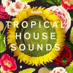 SM101 Tropical House Massive Patches