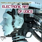 Psyload Electronic Art of Voice