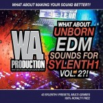 WA Production What About Unborn EDM For Sylenth1 Vol.1 2