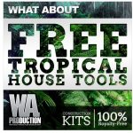 WA Production What About Tropical House Tools Preset For Sylenth1