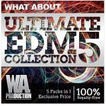 WA Production What About Ultimate EDM Collection Vol.5 WAV MiDi