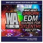 WA Production What About Unborn EDM Sounds 2 For Sylenth1