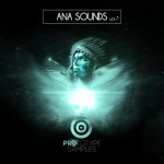Prototype Samples ANA Sounds Vol.3 For A.N.A