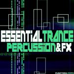 Function Loops Essential Trance Percussion and FX WAV