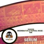 Vandalism Shocking Moombahton And Tropical House For XFER RECORDS SERUM-DISCOVER