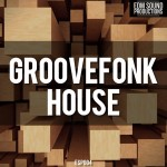 EDM Sound Productions Groovefonk House WAV MiDi-DISCOVER
