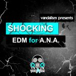 Vandalism Shocking EDM For A.N.A