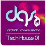 Delectable Records Tech House 01 MULTiFORMAT DVDR-DYNAMiCS