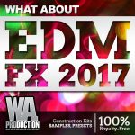 WA Production What About EDM FX 2017 WAV-DISCOVER