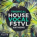 Mainroom Warehouse Tropical House Vocal FSTVL Anthems WAV MiDi Spire and Avenger Presets