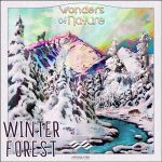 Articulated Sounds Winter Forest WAV-DISCOVER