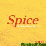 Arc Samples Spice Indian Bass Vol.2 WAV