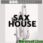 Audentity Records Sax-House WAV MiDi
