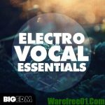 Big EDM Electro Vocal Essentials WAV MiDi FLPs TUTORiAL